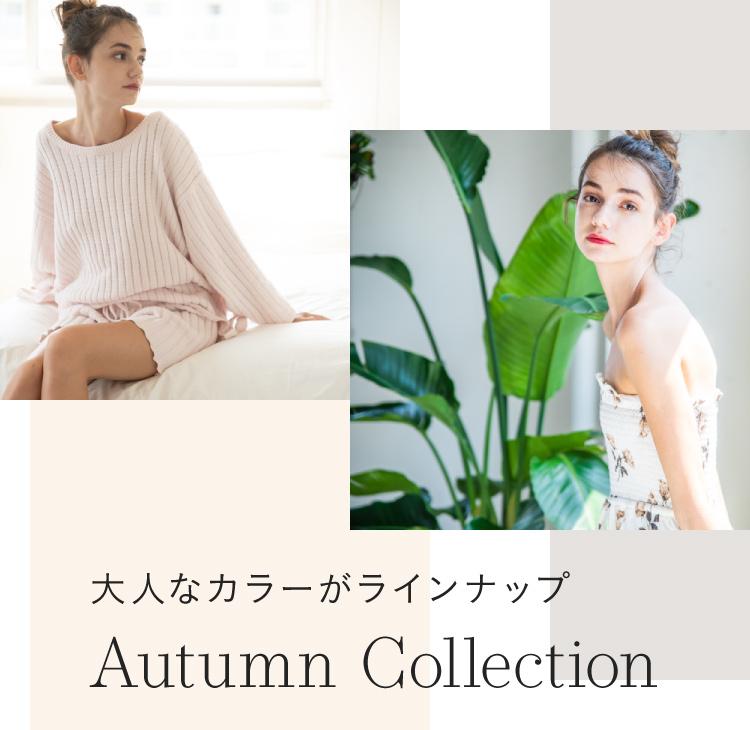 秋を感じる新作コレクション
